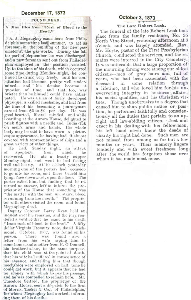 1873 Obituaries Page 3